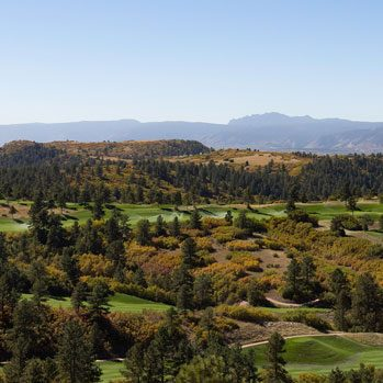 rolling hills of green in castle pines
